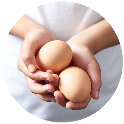 Eggs ingredient being cradled in hands, nothing artificial ever