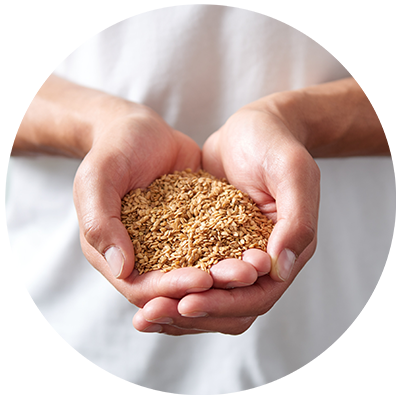 Flax Seeds ingredient being cradled in hands, nothing artificial ever